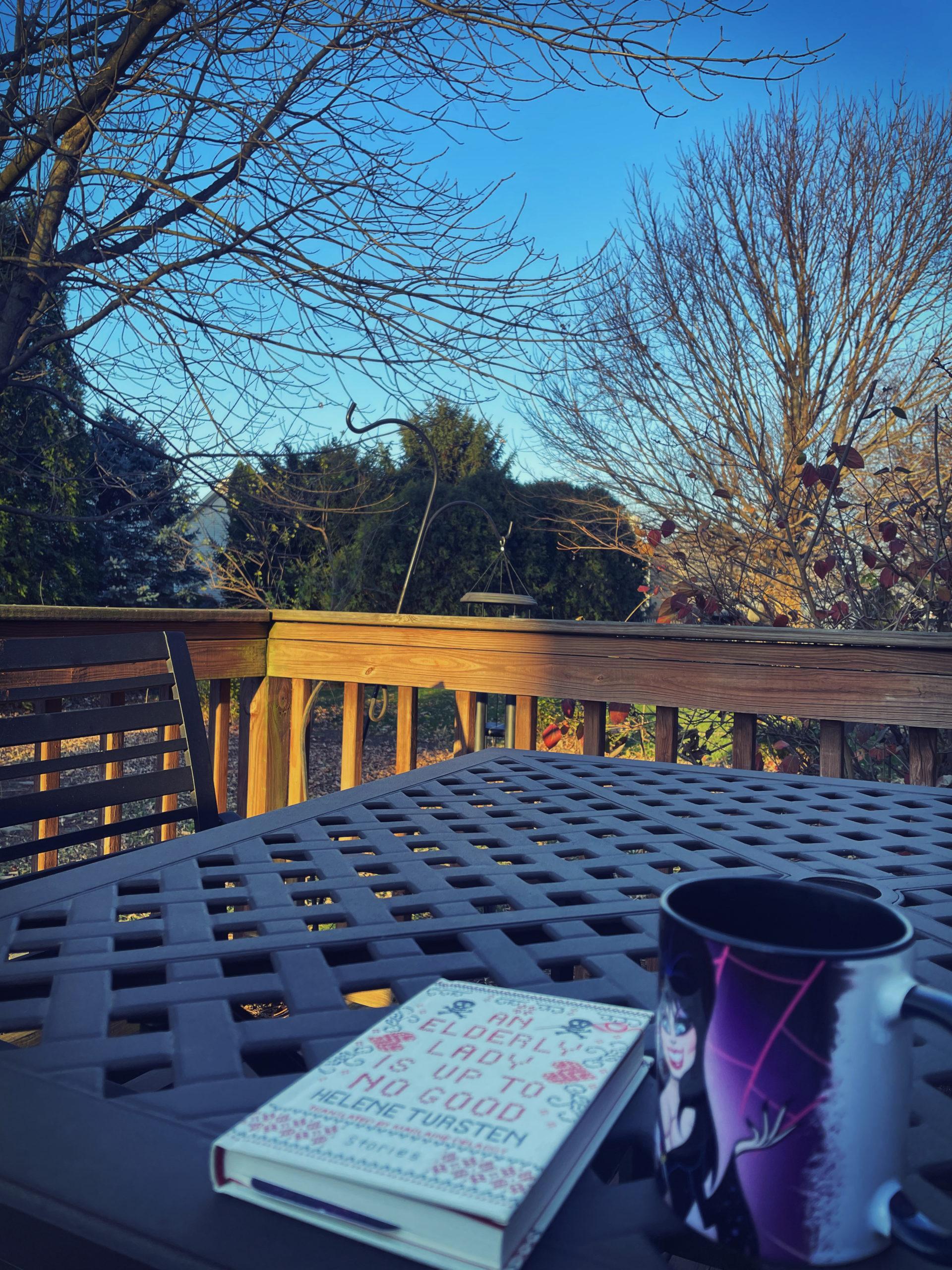 Backyard Morning - 11-20-2-